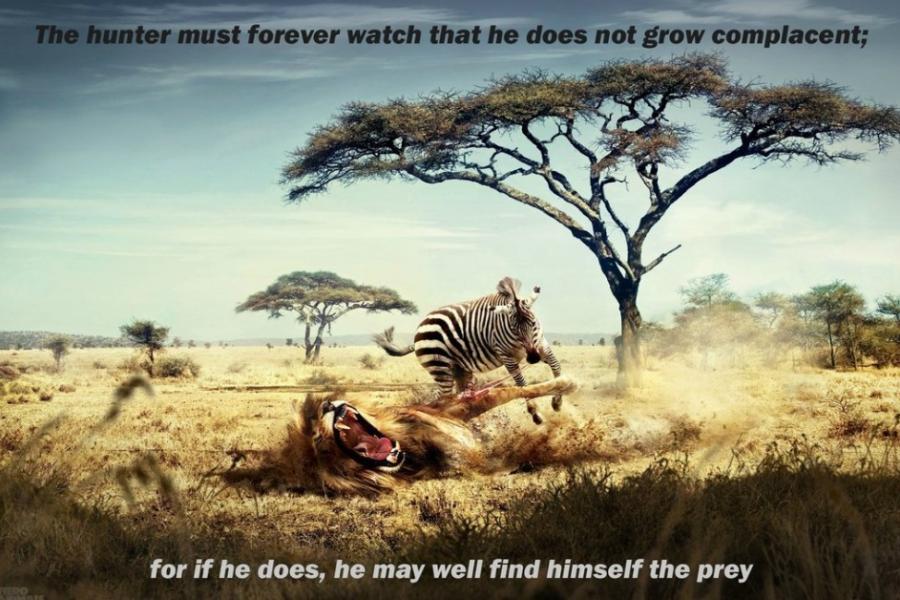 Motivation picture quote wallpaper 11